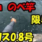 【衝撃映像】延べ竿2mでチヌ黒鯛を簡単に釣る方法 ヘチ釣り 落とし込み 前打ち