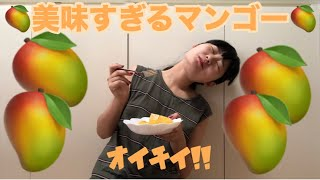 【食レポ】美味いマンゴー食った