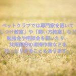 ペットクラブについて 愛犬家住宅 ペットリフォーム 千葉県