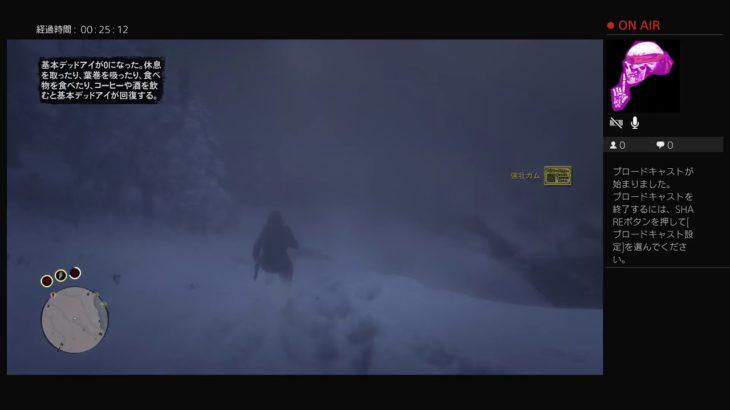 ゲーム実況 RDR2 ONLINE 【雇われキラー 雪山編】 A hired killer:Snowy mountains.