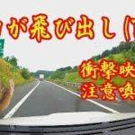 シカによりスバルWRX S4が(T_T)【北海道衝撃映像】注意喚起!247