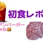 [初食レポ]マクドナルドの期間限定バーガーを食べてみた