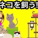 猫カフェでペット探し♡ クイズに正解すると動物プレゼント♡ リンダの新しい家族は…