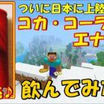 【食レポ】新発売のコカ・コーラ エナジー飲んでみた【ついに日本上陸の新商品♪】