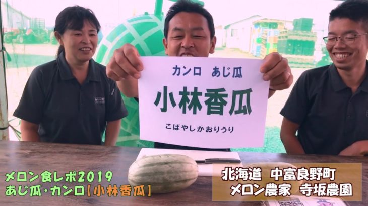 『小林香瓜:こばやしかおりうり』あじ瓜・甘露を食レポ!:北海道 富良野 メロン農家の寺坂農園