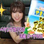 激ウマ!!ペヤング沖縄ゴーヤMAXがむちゃくちゃ美味しかった件。【食レポ】