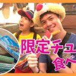 【英語でディズニーシー食レポ】ソアリンOPENでパイナップル味のチュロスが登場!そのお味は??  | Chita&Allen | English Education