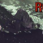 【ROT】森を這いずる謎の女【ホラーゲーム】【ゆっくり実況】