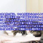 猫の味覚 ~ペットリフォーム 埼玉県~