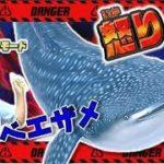 【釣りスピリッツ 冒険モード】#8 ジンベエザメとバトル! こんなに怒るジンベエザメは初めて見た(笑) 遺跡ステージ ゲーム実況 コーキgames