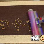 Dyson V8 Slim Fluffyでペット用の餌・砂を吸い取った動画