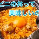 【食レポ】コンビニの丼を食べたことないので食べてみた!
