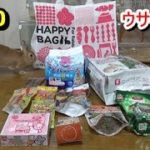 【ハムスター】2020 ウサギ用福袋(イオンペット)Hamster