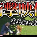 【ラトナ・プティ】犬を撫でようとしただけなのに衝撃映像になってしまうプティ